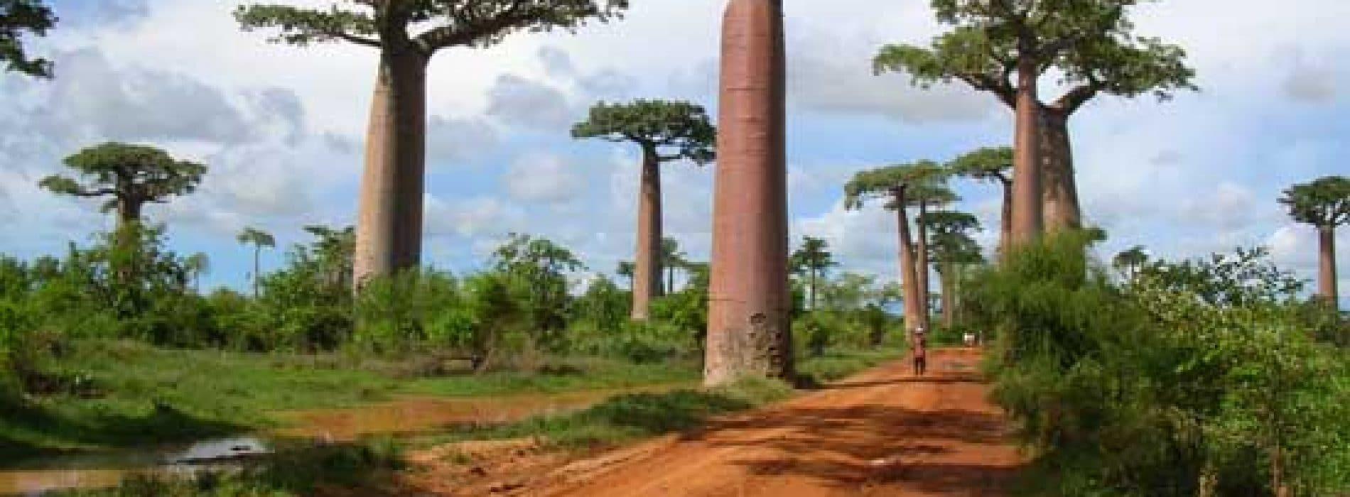 Paris- Madagascar : bien se préparer pour 10 heures de vol.