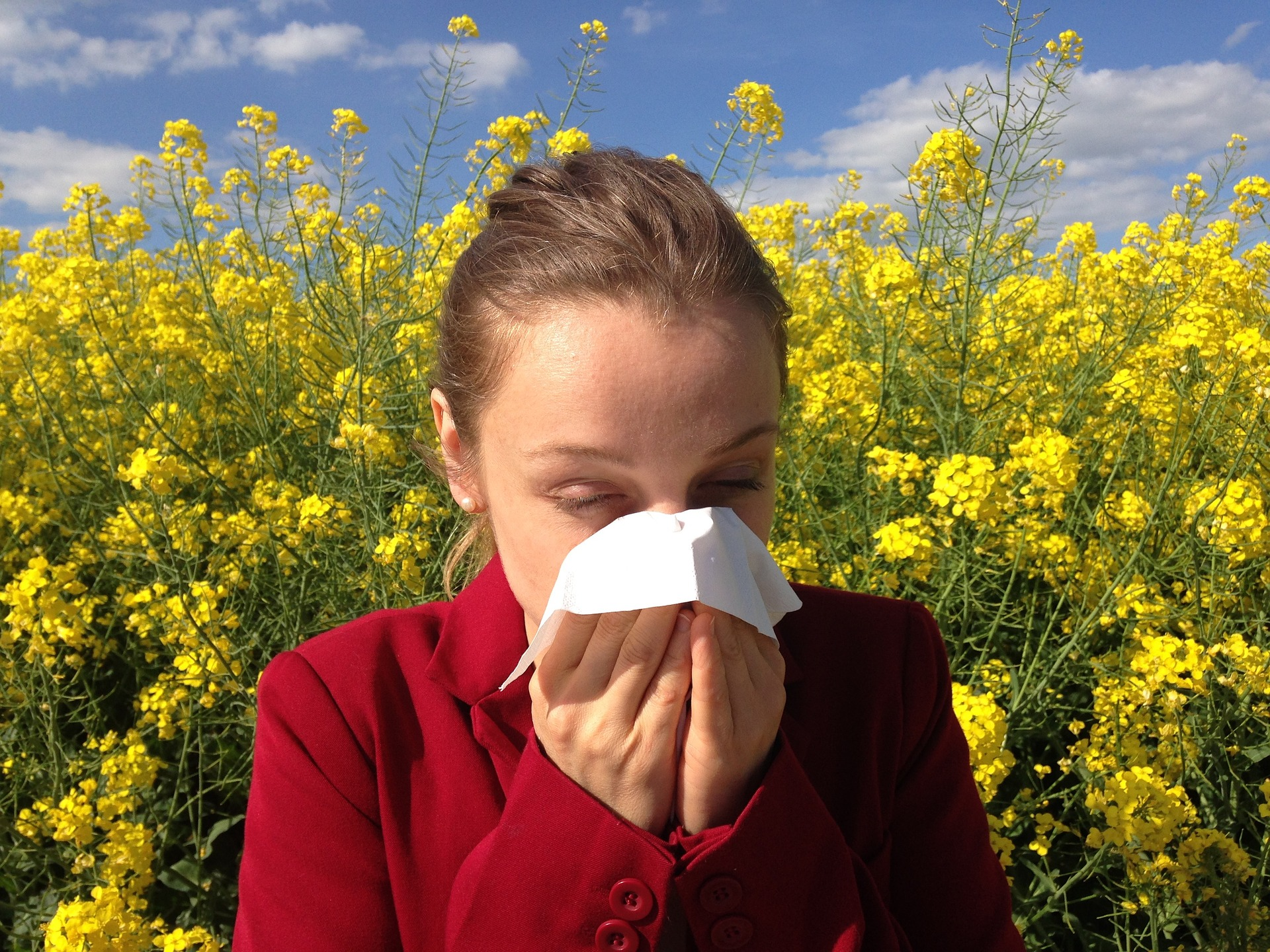 Qu'est-ce qui provoque les allergies ?